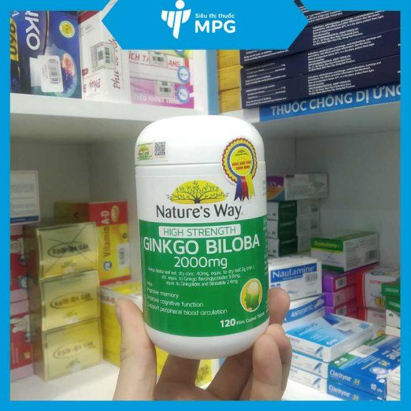 Ginkgo Biloba 2000 cải thiện chức năng tuần hoàn máu não